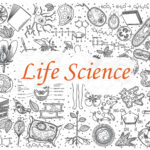 Protected: Life Science Grade 12